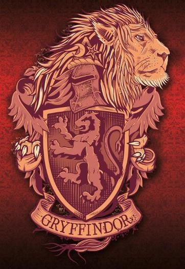 Набор «Гриффиндор»